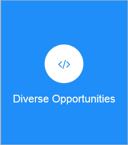 Diverse Opportunities
